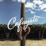 Cafayate - Bodegas Etchart